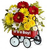 Flowers - Babys First Wagon 49.95