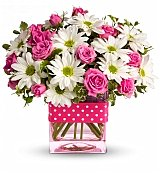 Flowers - Polka Dots and Posies 39.95