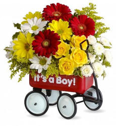 Babies First Wagon - New Baby Flowers
