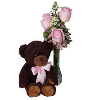 Pink Roses & Teddy Bear