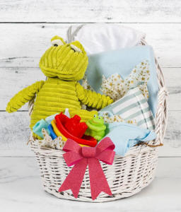 Frog themed new baby gift basket