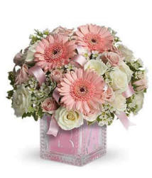 Pink Baby Girl Flowers