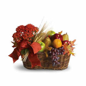 Fruit With A Plant Basket